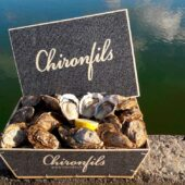 Chironfils, producteurs d'huîtres depuis 4 générations