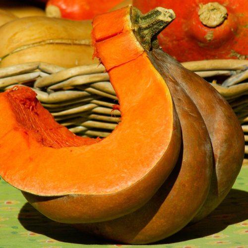 Courge musquée de Provence