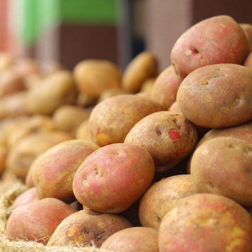 Pommes de terre chair ferme