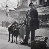 Produits laitiers de chèvre