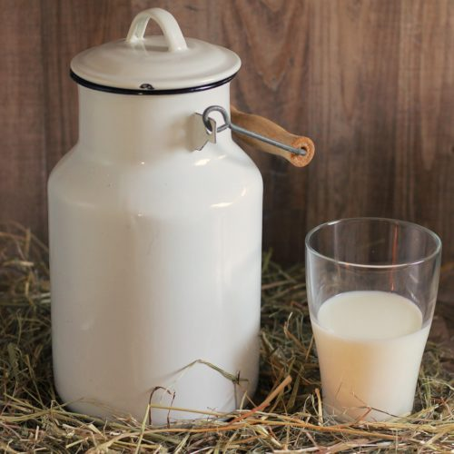 Lait cru de vache de la ferme Marie-José Violleaud