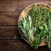 Herbes aromatiques - Ferme de la Brunette