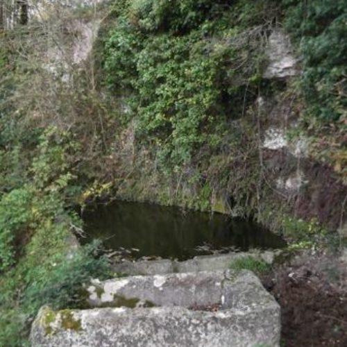 Ferme de Font Pâques - Mortagne sur Gironde