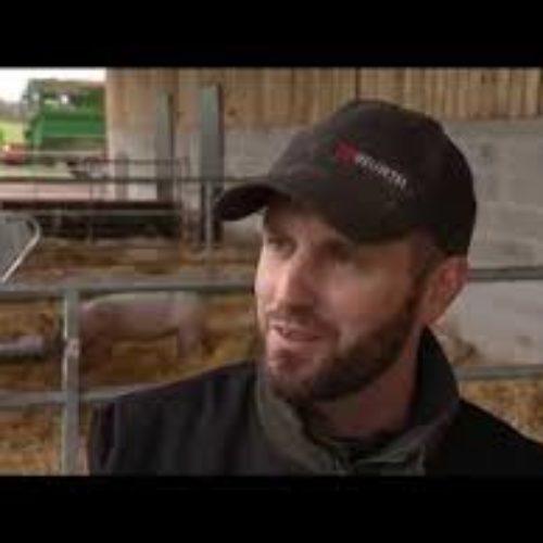 Bruno Bonnin éleveur de porcs en agriculture biologique à Thairé d'Aunis