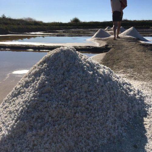 Gros sel - Sel en Seudre